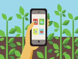 Apps Para el Cuidado de Tus Jardines Y Huertos