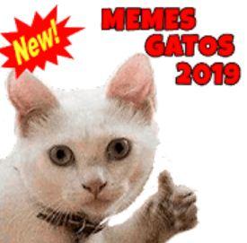 Nuevos Memes de Gatos 2021